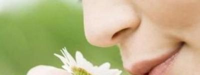 El marketing olfativo llega a España: Compramos lo que olemos