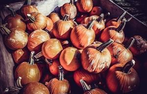 El fenómeno comercial de Halloween